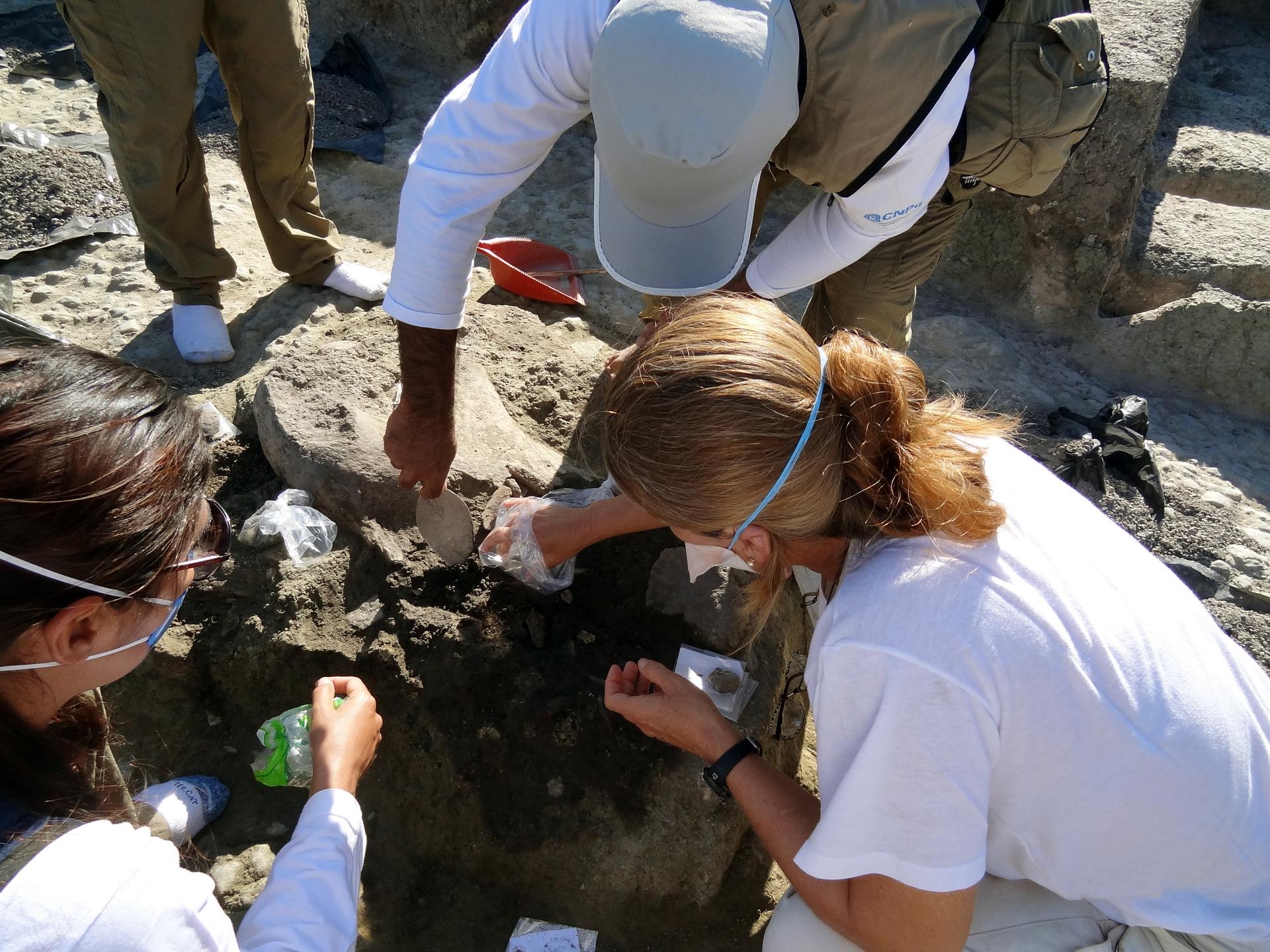 Paleoparasitologia, ecologia e emergência de infecções parasitárias